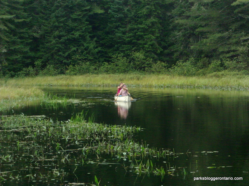 100km of Paddling in Algonquin Provincial Park