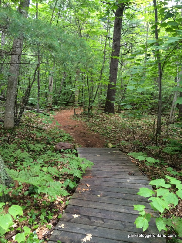 hiking through the woods in Beausoleil Island