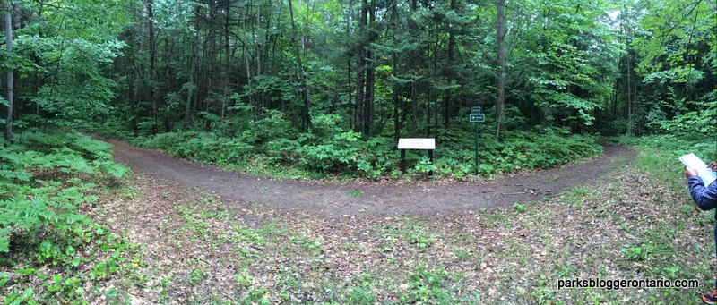 Rockview trail meeting Huron Trail