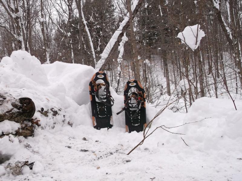 Snowshoes - Western Uplands trail - Algonquin