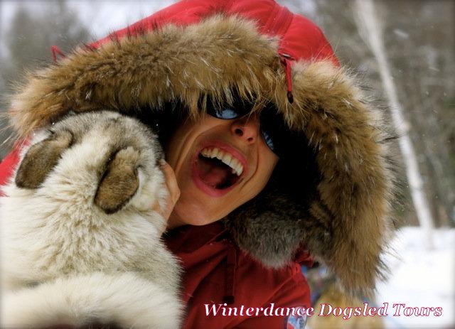 winterdance dogsled tours